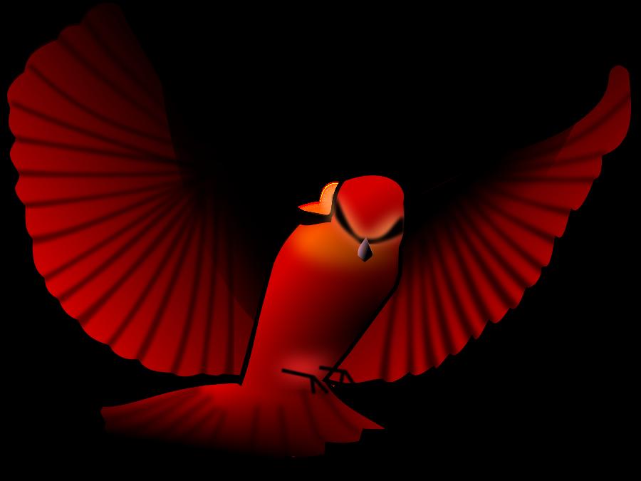 900x675 Free Red Bird Clip Art