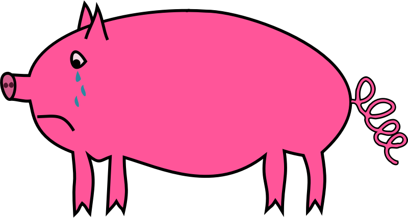 800x428 Collection Of Simple Pig Clipart High Quality, Free Cliparts