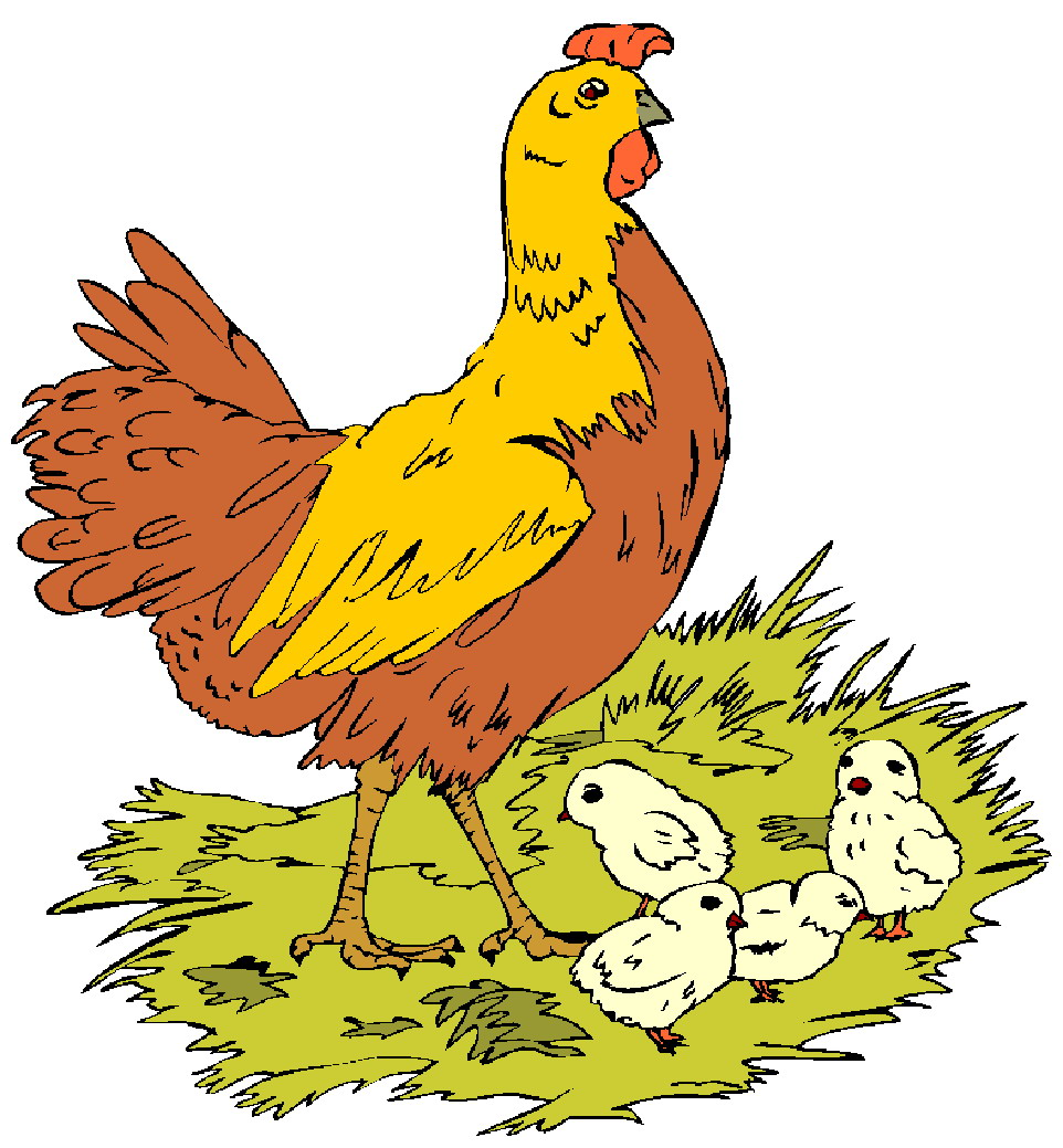 962x1039 Chickens Clip Art Farm