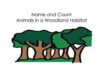 350x271 Woodland Habitat Teaching Resources Teachers Pay Teachers