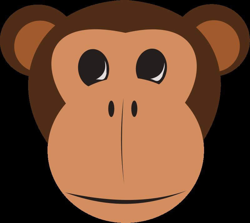 800x715 Cartoon Animal Faces