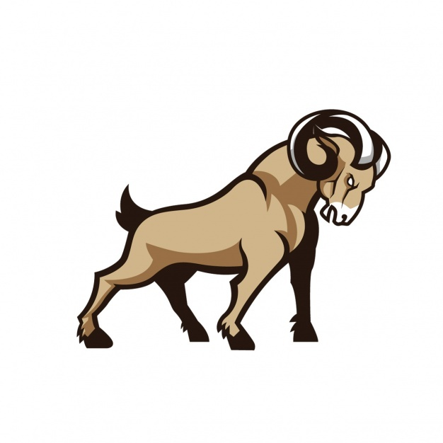 626x626 Goat Vectors, Photos And Psd Files Free Download