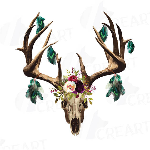 570x570 Watercolor Floral Deer Skull Clipart Indian Tribal Deer