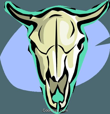 462x480 Cow Skull Royalty Free Vector Clip Art Illustration Vc015505