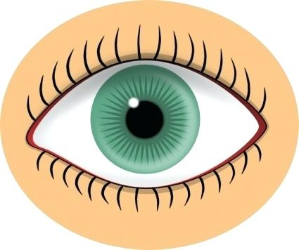 425x356 Free Clip Art Eye Eyes Blue Eye Clip Art Free Vector In Open