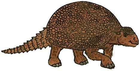 468x240 Glyptodont Pictures