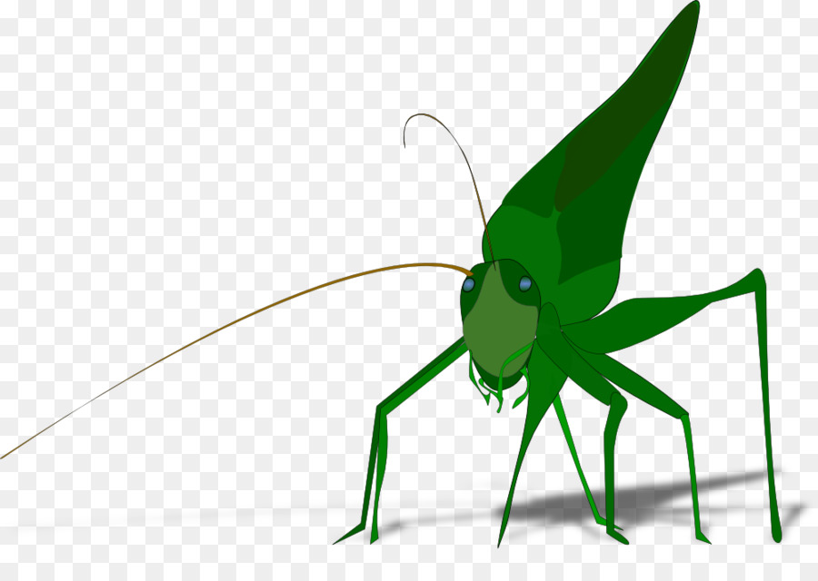 900x640 The Ant And The Grasshopper Clip Art