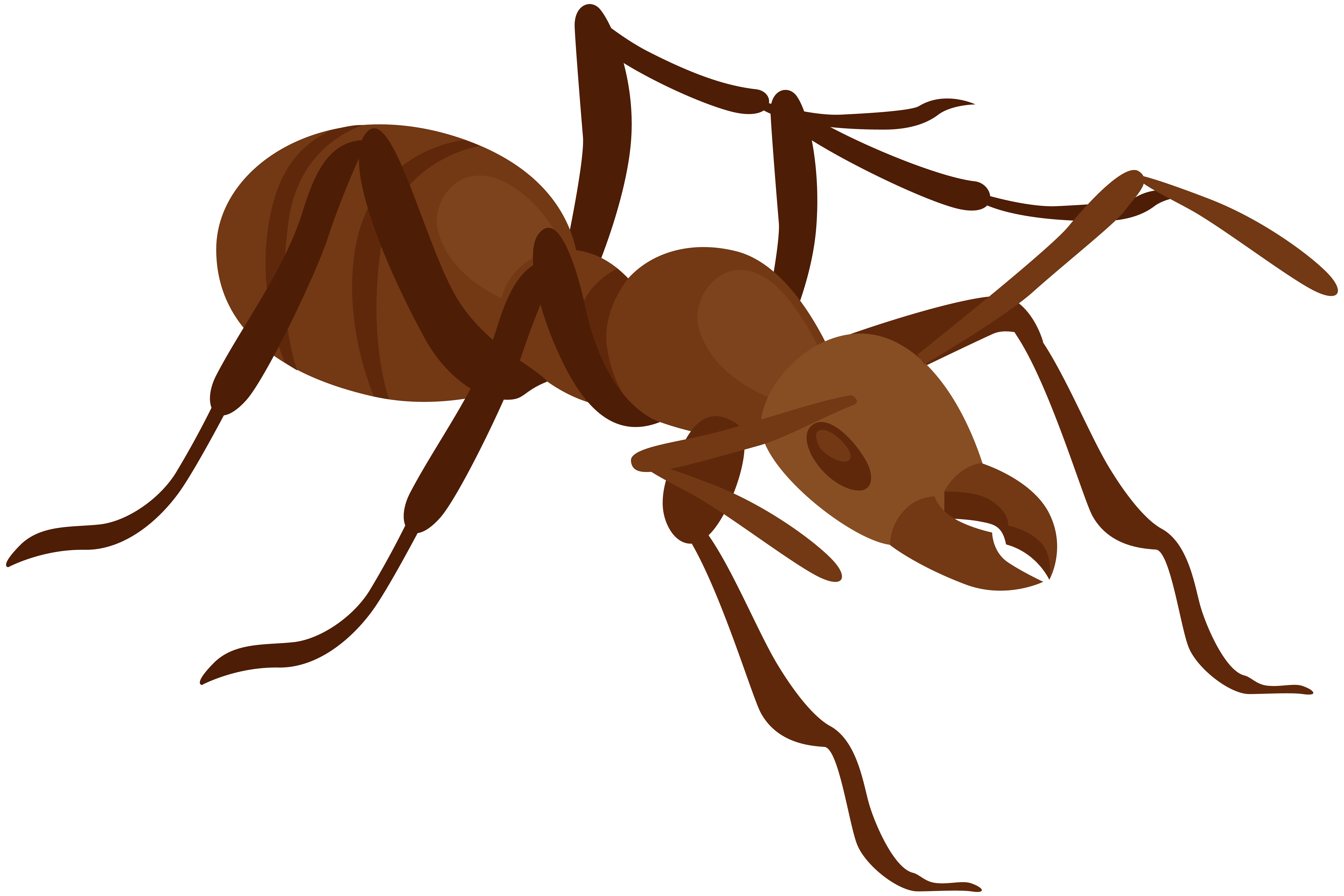 ant clipart at getdrawings com free for personal use ant clipart rh getdrawings com clip art images of ants clip art ants marching