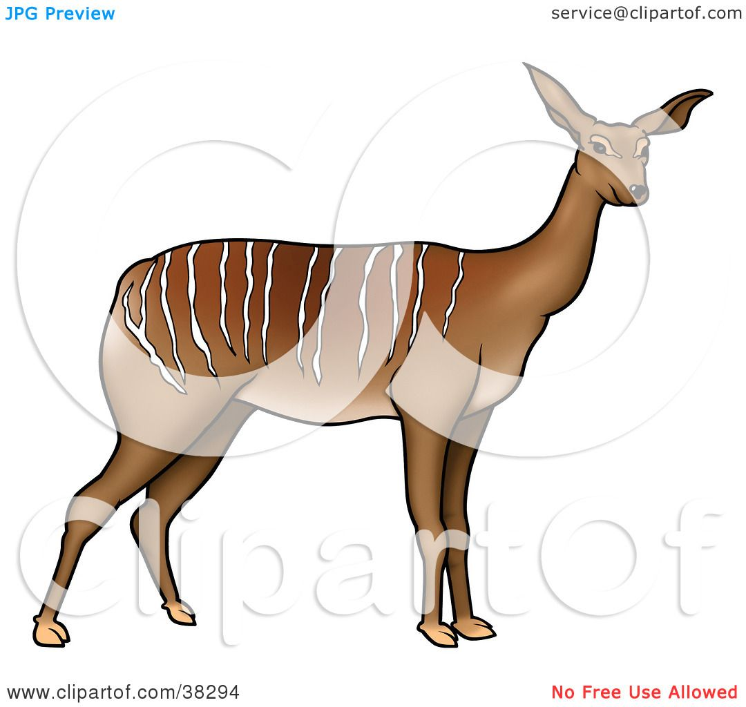 1080x1024 Clipart Illustration Of A Wild Antelope With White Stripes Along