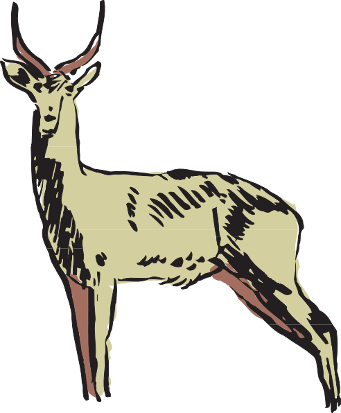 492x596 Green Antelope Drawing Clip Art
