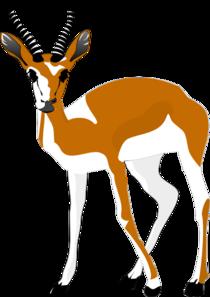 210x297 Antelope Clip Art