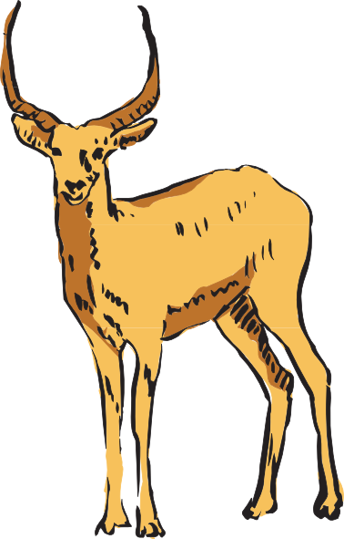 378x591 Standing Antelope Drawing Clip Art