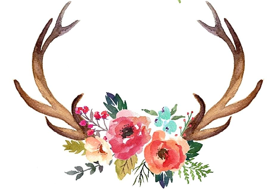 900x640 Deer Antlers Clipart Download Easy Deer Antler Clip Art Free Deer