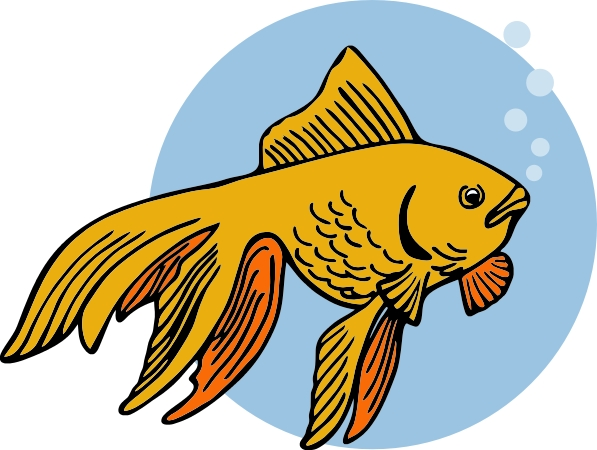 597x450 Goldfish Clip Art Black And White Free Clipart