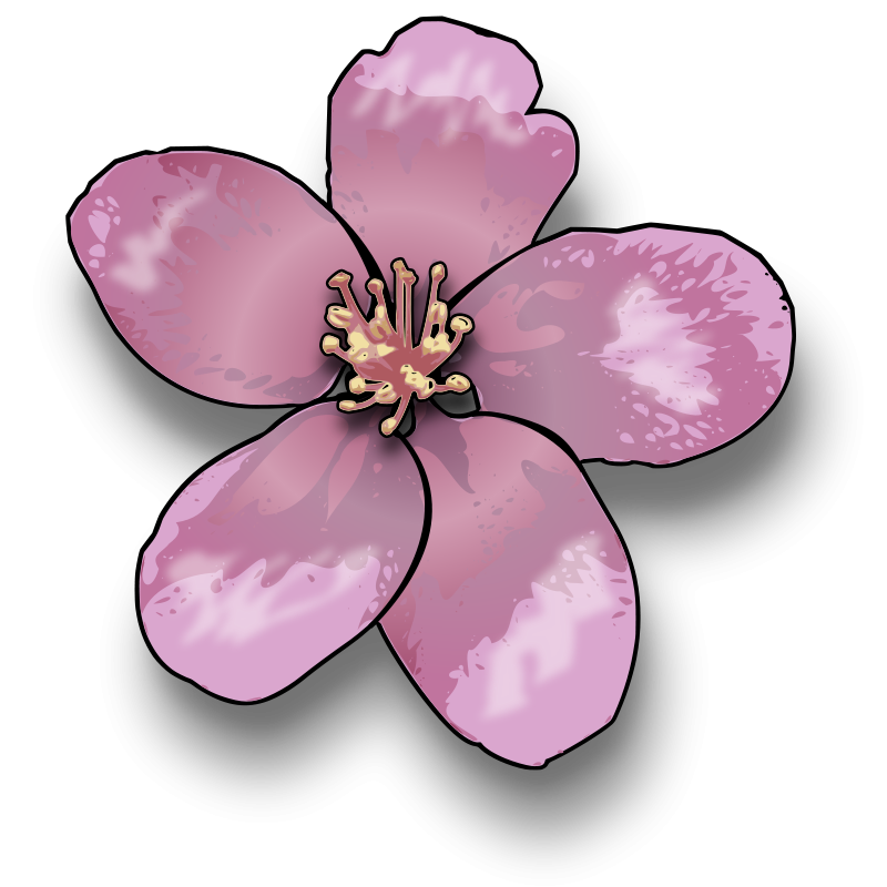 800x800 Flower Clipart Pictures Royalty Free