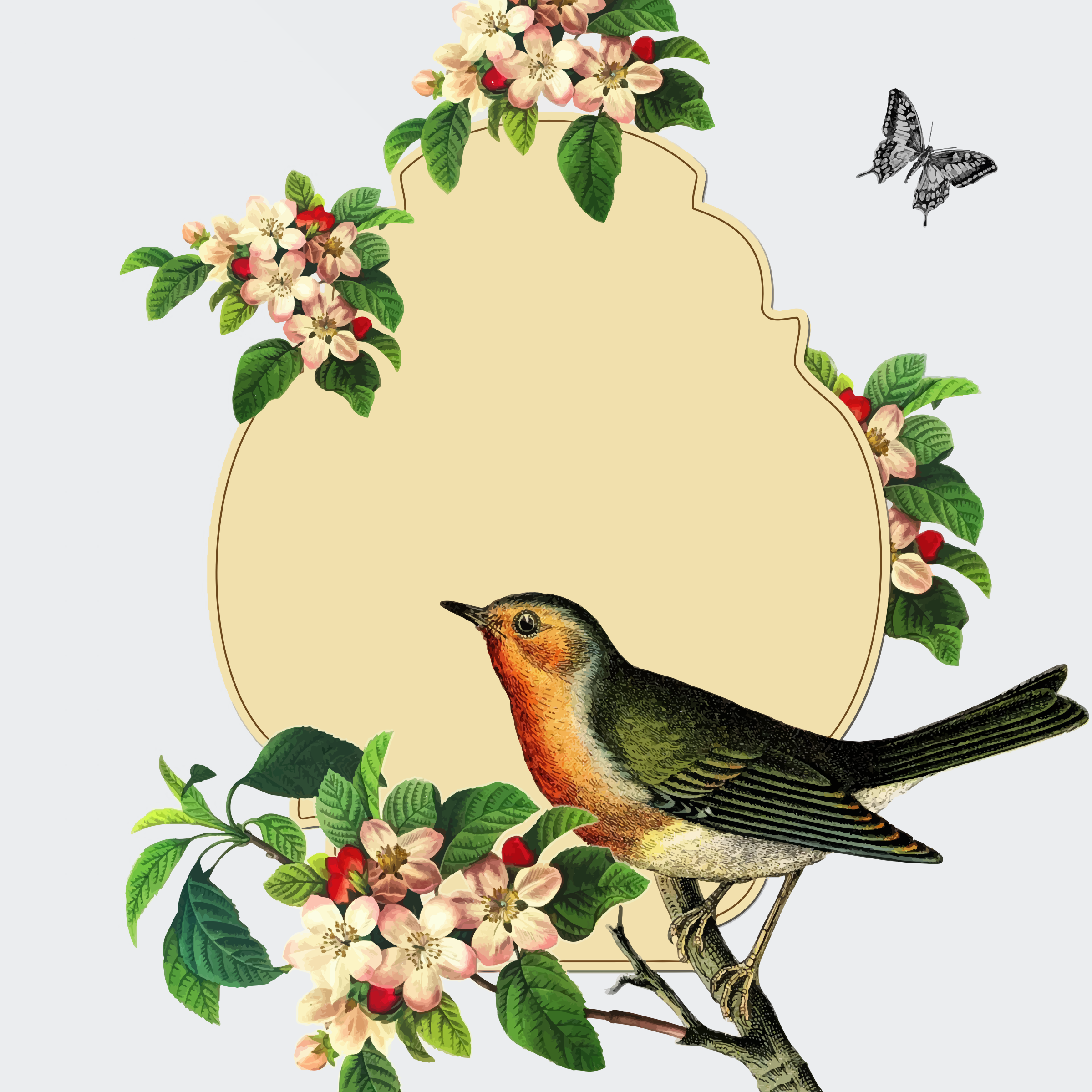 2399x2399 Vintage Bird With Apple Blossom By @gdj, From Pdp.,