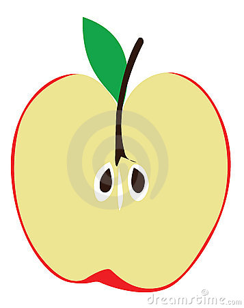 357x450 Cut In Half Clipart Clip Art Apple