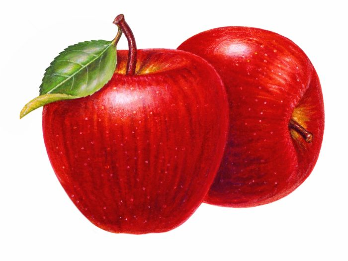 700x525 Free Clipart Fruits Png Apple Png Free