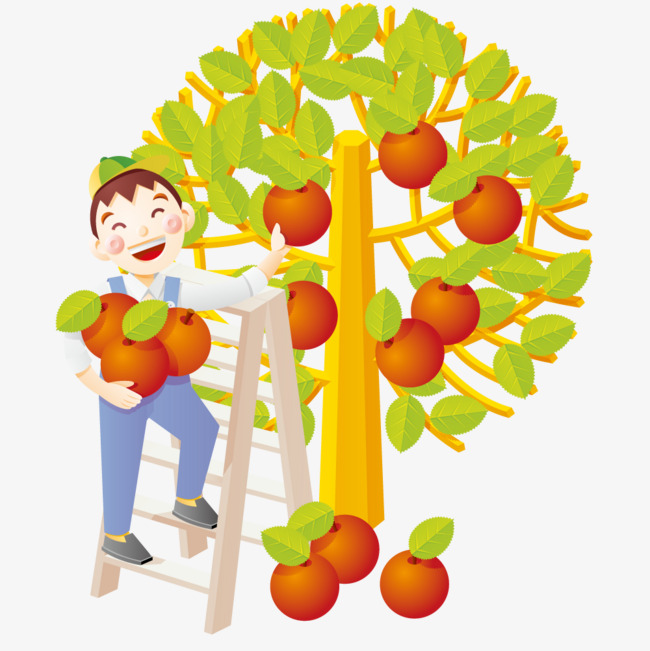 650x651 Boy Picking Apples, Fruit, Apple, Boy Png And Vector For Free Download