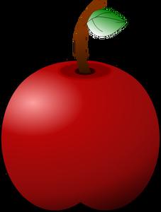 227x300 1060 Apple Fruit Images Clip Art Public Domain Vectors