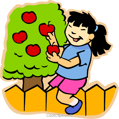 480x478 Girl Picking Apples Royalty Free Vector Clip Art Illustration