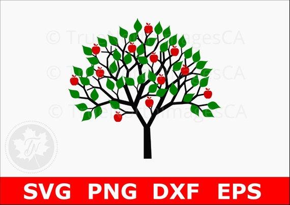 570x404 Apple Tree Svg Tree Svg Tree Clipart Tree Clip Art