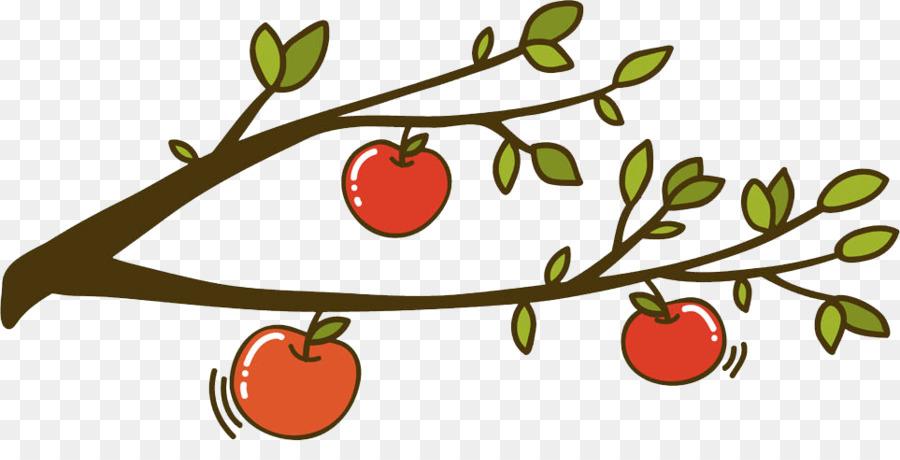 900x460 Apple Auglis Clip Art