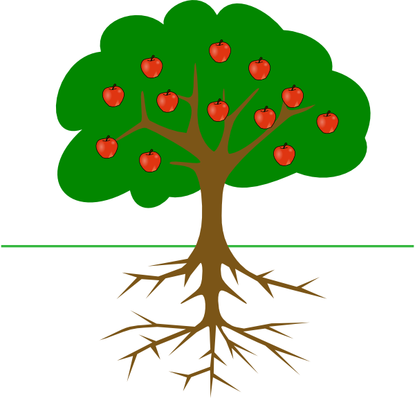 600x575 Apple Tree Clipart Apple Tree With Roots Clip Art