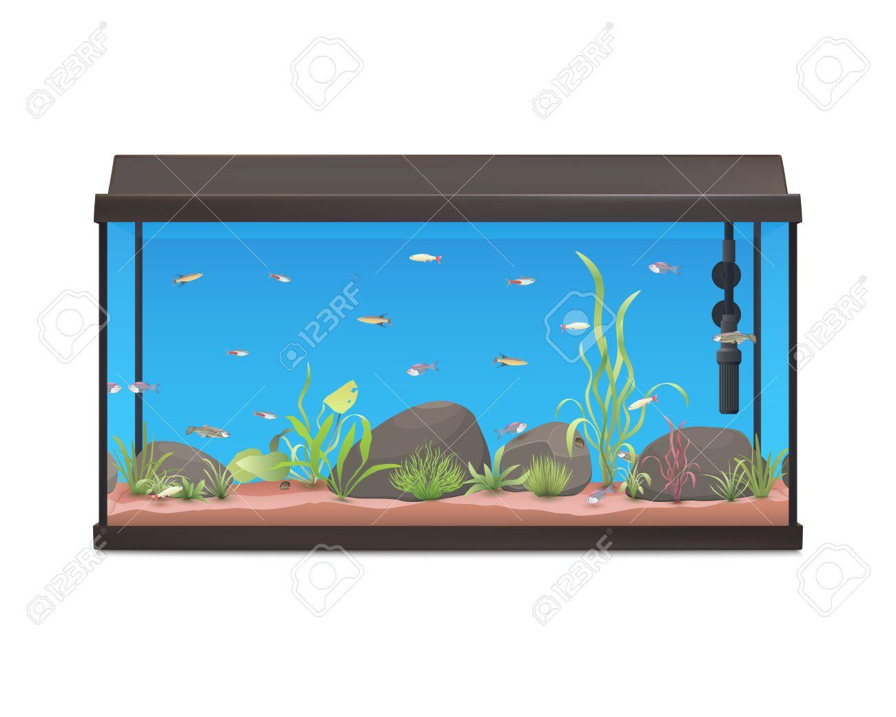 1300x1040 Fish Tank Fish Bowl Clip Art Clipart Image Fishbowl Free