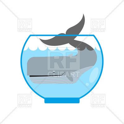 400x400 Funny Whale In Aquarium Royalty Free Vector Clip Art Image