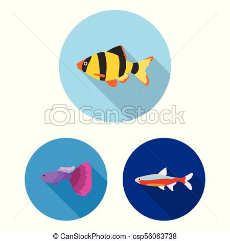 450x470 Different Types Of Fish Flat Icons In Set Collection