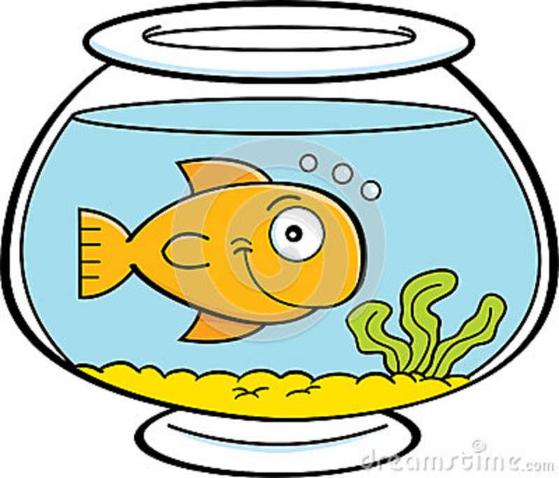 800x684 Fish Tank Clipart