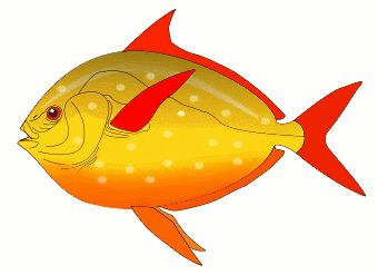 340x247 Free Aquarium Fish Clipart, 2 Pages Of Public Domain Clip Art