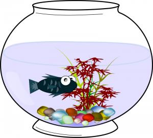 300x271 Aquarium Fish Clip Art Download