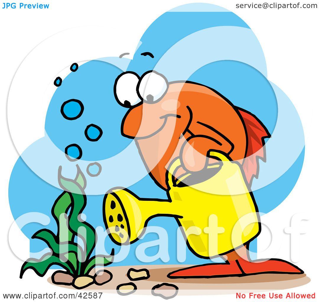 1080x1024 Clipart Illustration Of An Orange Marine Fish Watering An Aquatic