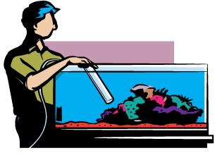 315x217 Fish Tank Clipart Aquatic