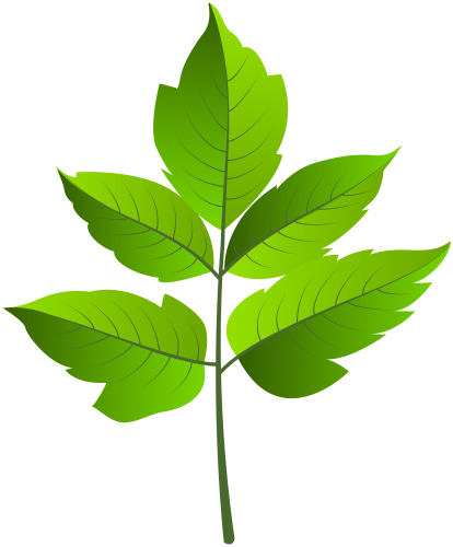 414x500 Leaf Green Png Clip Ar Leaves And Clip Art