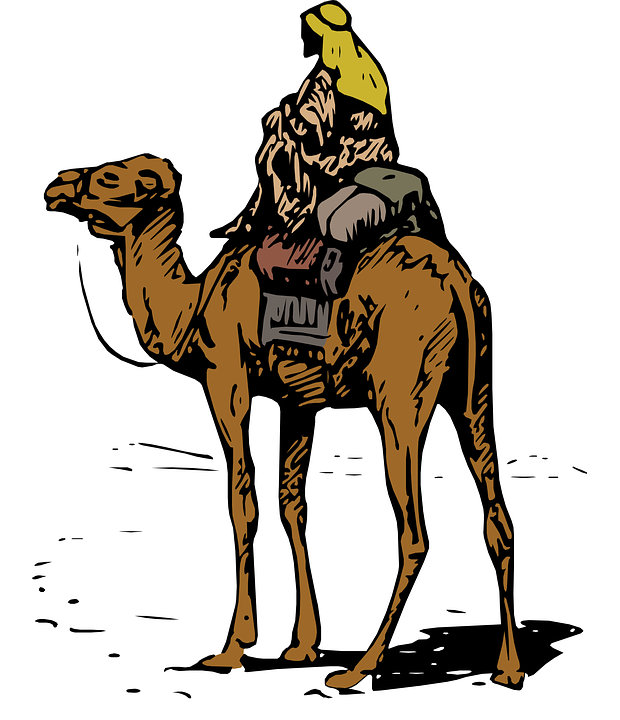 620x720 Arabian Clipart Bedouin