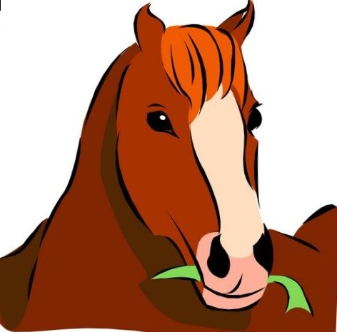 472x465 Pictures Of Horse Heads Clip Art