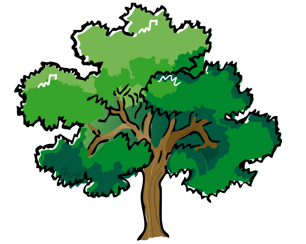 983x784 Web Design Amp Development Tree Outline, Pine Tree And Clip Art