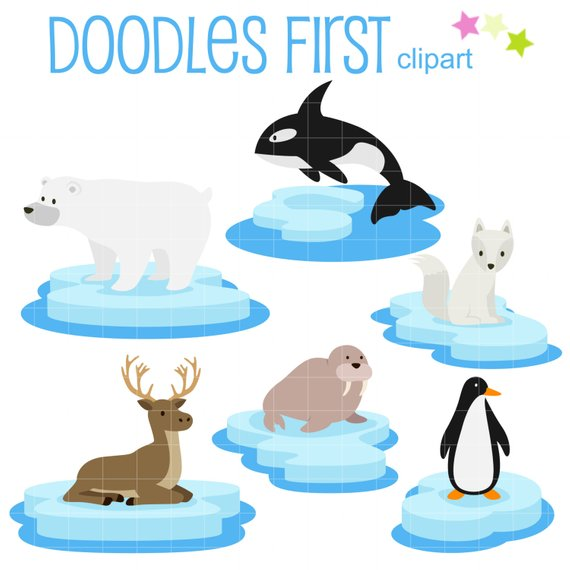 570x570 Arctic Animals On Ice Clip Art For Scrapbooking Card Making