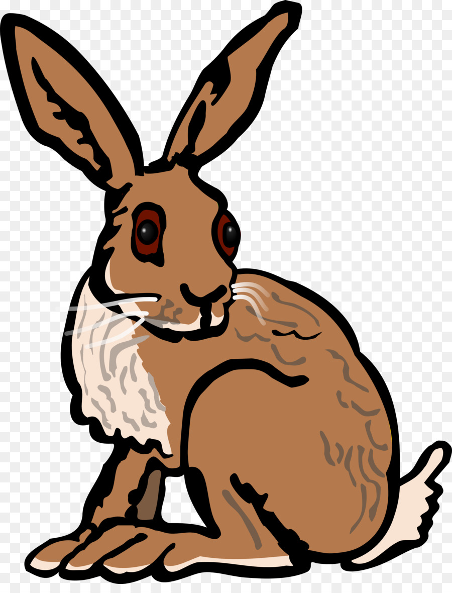 900x1180 European Hare Arctic Hare Rabbit Clip Art