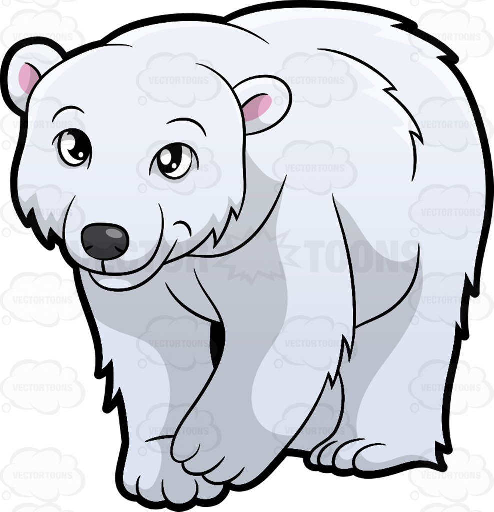 988x1024 Arctic Animals Vector 53462224 Polar Clipart Yanhe Clip Art