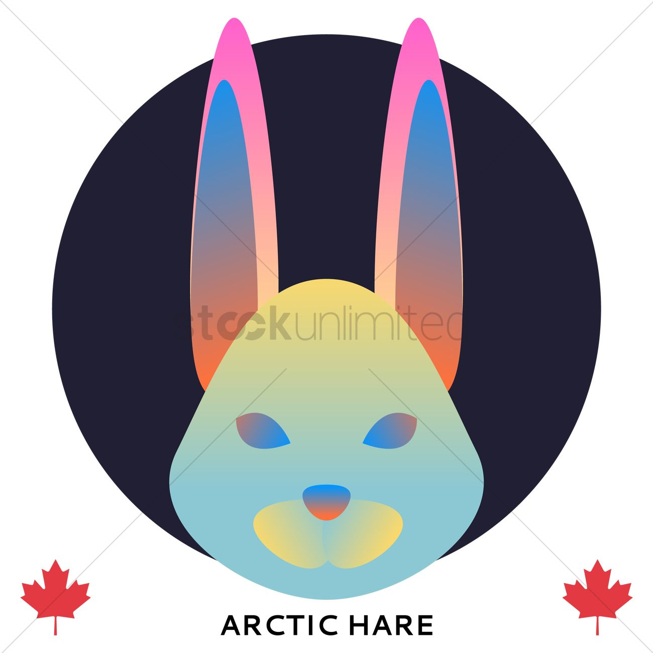 1300x1300 Arctic Hare Vector Image