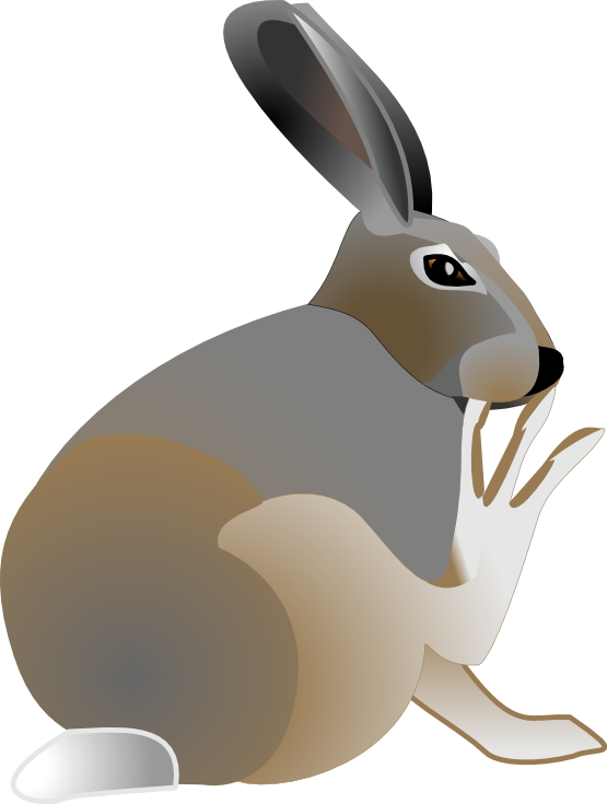 555x735 Free Easter Clipart
