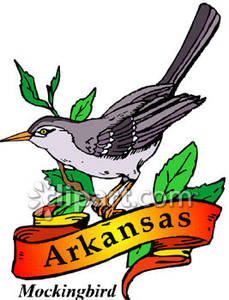 229x300 The State Bird Of Arkansas, The Mockingbird