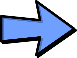 300x228 Arrow