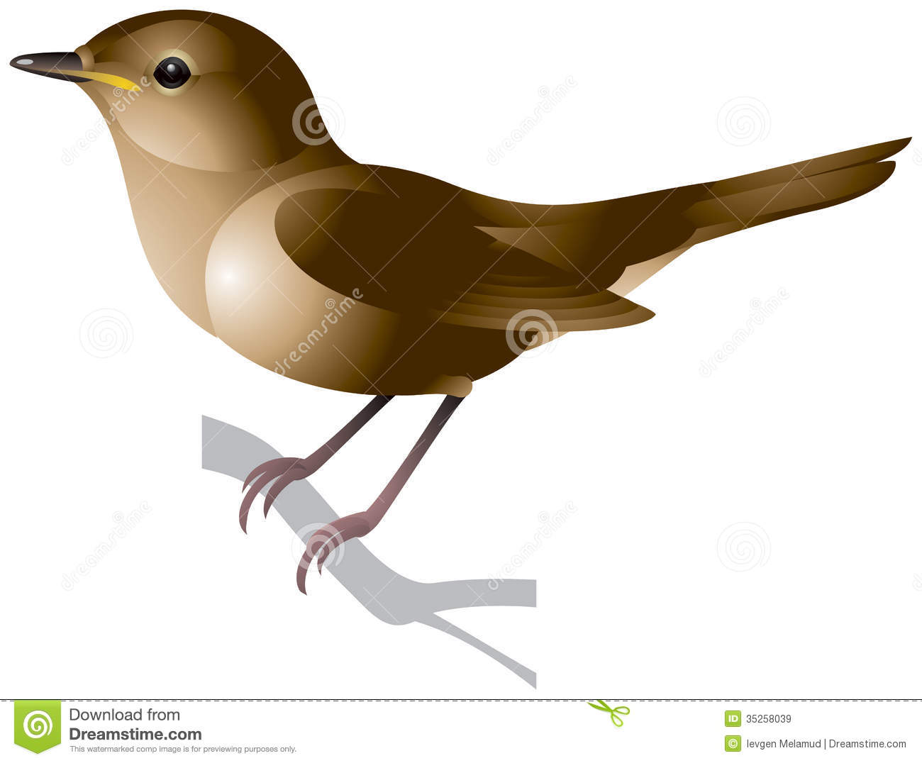 1300x1076 Top 96 Nightingale Clip Art