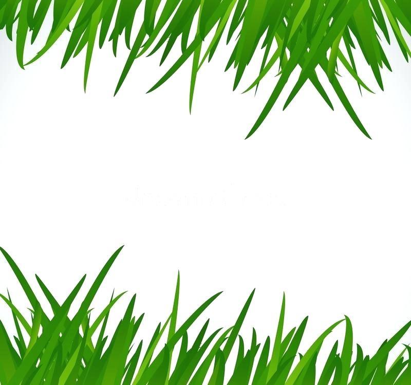 800x749 Green Grass Clip Art Download Green Grass Border Illustration
