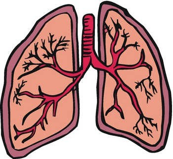 350x322 Lung Cancer Clipart
